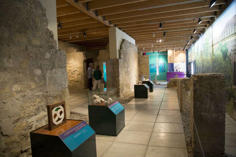 Museos de córdoba