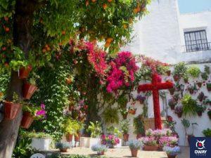 Cruz de mayo en patio cordobés en Córdoba