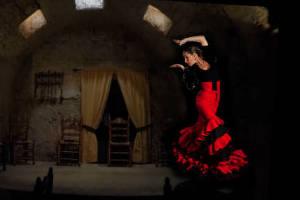 tour flamenco y pasion