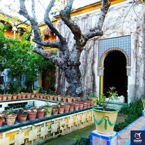 Jardines interiores pertenecientes a la Casa de Pilatos en Sevilla