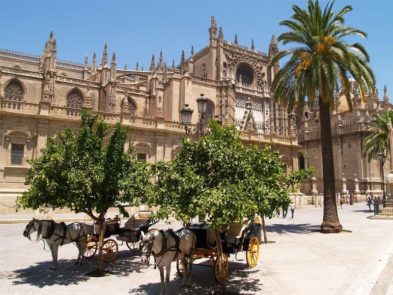 Free Tour Sevilla