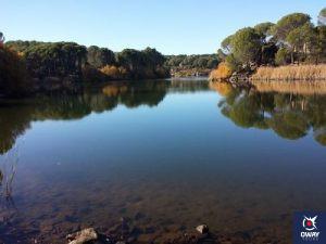 Imagen de un lago