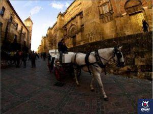 Transportes públicos de Córdoba