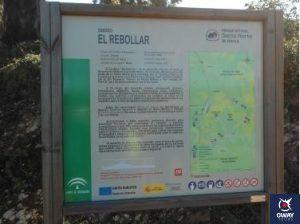 Las Mejores Rutas de Senderismo de Sevilla