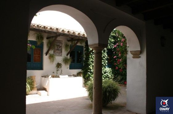 patio de los gatos