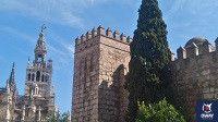 Catedral y Alcazar