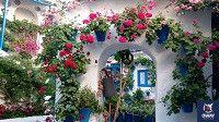 patios de flores en cordoba