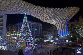 Mushrooms of Seville at Christmas
