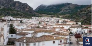 Roofs and forest in the village of Grazalema in Cádiz