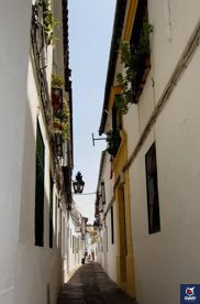 Calle Averroes