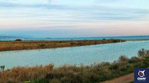 Desembocadura del Guadalhorce