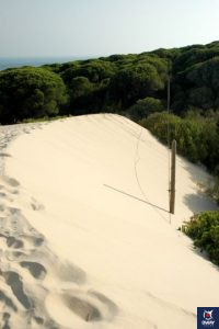 Great Dune of Bolonia