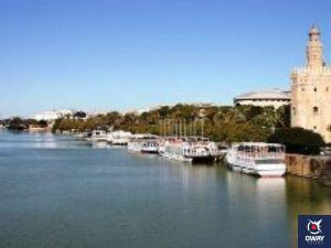 Foto de la terminal de barcos de Sevilla