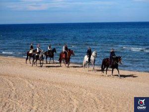 The beach Malaga