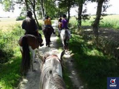 Varias personas paseando a caballo por el campo en Granada