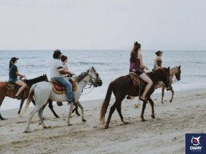Un grupo de personas paseando a caballo por la playa en Granada