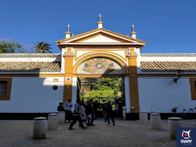 Entrance to the Palace of the Dueñas