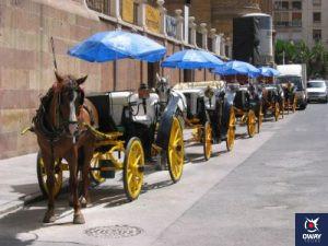 Où peut-on prendre une calèche à Malaga ?