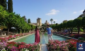 Jardines del Alcázar