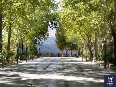 La Alameda Ronda