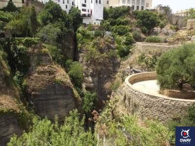Los Jardines de Cuenca Ronda