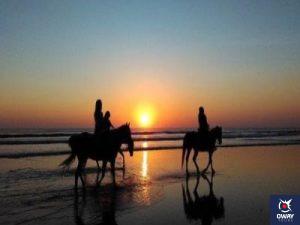 Paseo a caballo por las playas de Cádiz durante el atardecer