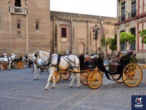 Coche de caballos frente a la Catedral (Sevilla))