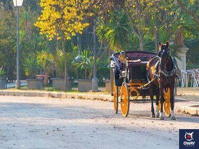 Calesa sevillana en el parque María Luisa (Sevilla))