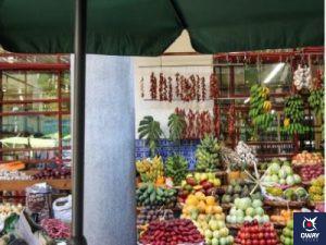 mercadillo ecológico de Marbella