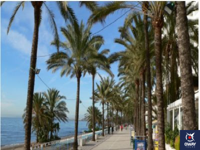 mercados y mercadillos en Marbella