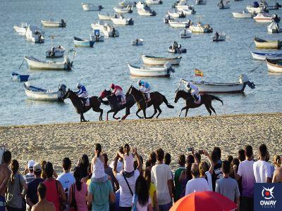 visitantes observando la carrera de caballos