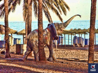Elefante en la Playa de Marbella