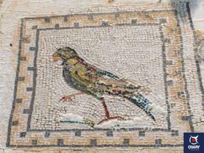 Mosaico de un pájaro en Itálica, Sevilla