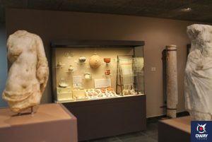 Museo Arqueológico Medina Sidonia