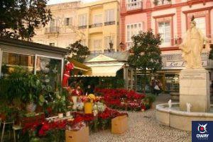 Place des Fleurs Cadix
