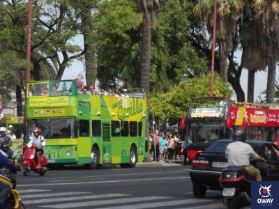 Rutas de buses turísticos en Sevilla