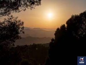 Parc naturel de Montes de Málaga