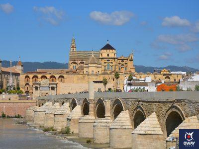 Imprescindibles de Córdoba, Puente Romano