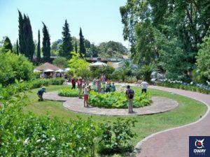 Touristes se promenant dans une zone du jardin botanique.