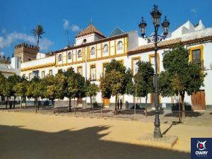 Vista naranjos Patio de las Banderas Sevilla