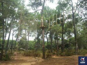 Activité scolaire dans l'Amazonie de Grenade en pleine nature, où le plaisir est garanti.