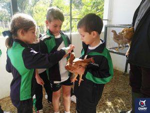 Voyage scolaire dans une ferme-école différente à Cadix