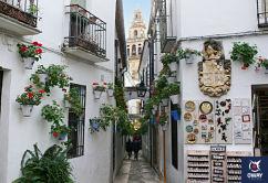 Una de las zonas mas visitadas por los turistas, la famosa Calleja de las Flores