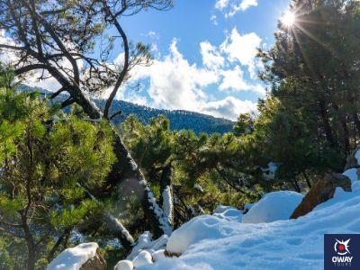 Sierra de las Nieves Málaga