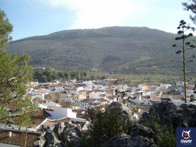 Mirador Málaga
