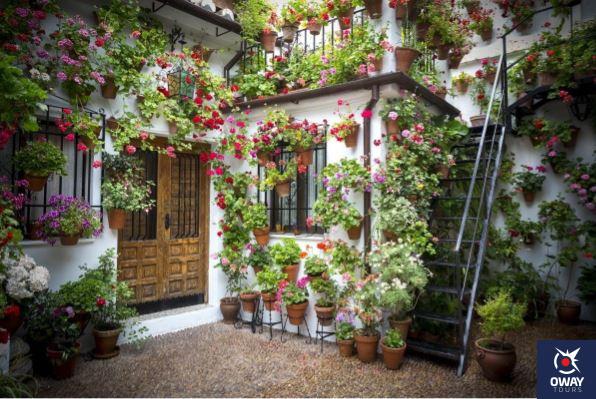 Courtyard full of flowers in Cordoba