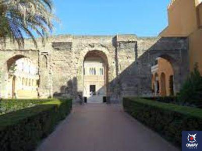 Patio del León Sevilla