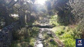 """Este sendero también llamado """"Circular de los Callejones"""" recorrerá un camino con suelo de piedra que nos llevará hasta el primero de esos callejones con muretes a los lados hacia el """"Barranco del Cagancho""""."""