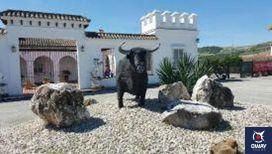 Si vous souhaitez passer des vacances avec votre animal de compagnie dans le centre-ville d'Arcos, vous pouvez séjourner à l'hôtel Marquestresoto, un bâtiment andalou traditionnel situé dans le centre historique, dont l'atmosphère et le paysage sont idéaux.