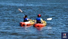 With the arrival of the good weather there are many companies that offer kayak excursions along the coast of Cadiz, where you can visit places of great interest such as the salt marshes, the salt flats and the castle of Sancti Petri, among others.